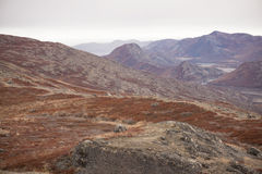 Arctic landscape in Greenland Stock Photography