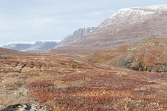 Free Arctic Landscape In Greenland Stock Photos - 43426893