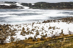 Arctic landscape in Norway on June Stock Images