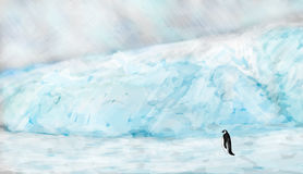 Arctic landscape with penguin Royalty Free Stock Image