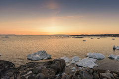 Arctic life and icebergs at sunset in Greenland. Stock Photo