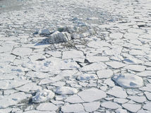 arctic lodowa oceanu paczki morza powierzchnia Fotografia Stock
