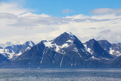 Arctic mountains and fjord Stock Images