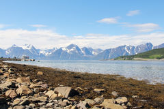 Arctic mountains and fjord Stock Image