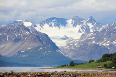 Arctic mountains and fjord Royalty Free Stock Photo