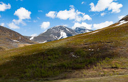 Arctic mountains with snow, trees and grass fields. A trail view of arctic, snow-covered mountains, forest and grass field with many stones Royalty Free Stock Image