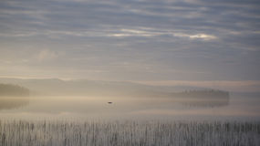 Sunrise over foggy lake Stock Image