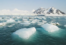 Arctic Ocean - ice in the sea Royalty Free Stock Images
