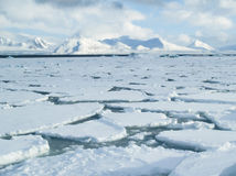 Arctic Ocean - Pack Ice On The Sea Surface Royalty Free Stock Photos