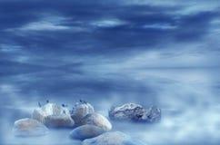 Arctic pigeons sitting on floating rocks Stock Image