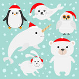 Arctic polar animal set in red Santa hat. White bear, owl, penguin, Seal pup baby harp hare rabbit narwhal unicorn-fish. Kids Chri Stock Photos