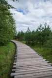 Arctic sandbar forest trails Mohe Arctic Village Royalty Free Stock Photo