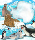 Arctic scenery - cartoon style with animals Royalty Free Stock Photography