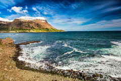 Arctic sea and coastline, Iceland Royalty Free Stock Photo