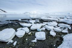 Arctic spring in south Spitsbergen. Hornsund Fjord royalty free stock photography