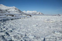 Arctic spring in south Spitsbergen Stock Photography