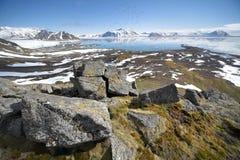 Arctic summer landscape Stock Image