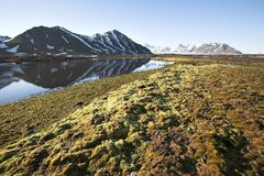 Arctic summer landscape - mountains and tundra. Arctic summer landscape - mountains, tundra, water Stock Photos