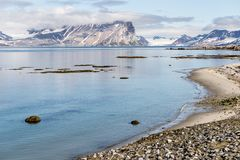 Arctic summer landscape - sea and mountains Royalty Free Stock Photo
