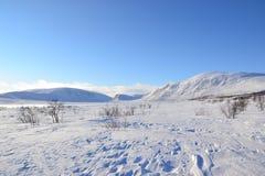 Arctic view Stock Photography