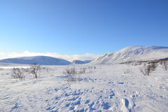 Arctic view. View on an arctic landscape Stock Photography