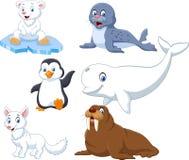 Arctics animals collection set Royalty Free Stock Photo