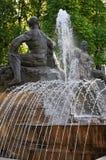 arcydzięgielowy Fontana Zdjęcia Stock