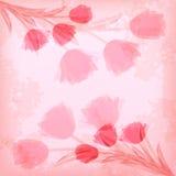 Ard del  di saluto Ñ con il tulipano Immagine Stock