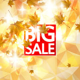 Сard with maple leaf enjoy autumn sales. Royalty Free Stock Image