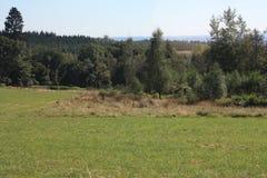 Ardenne на положении La Roche в Бельгии Стоковые Изображения RF