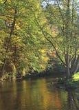 Ardennes Autumn Stock Photo
