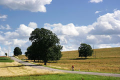 Ardennes Stock Photo