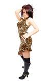 Ardent beautiful posing girl Stock Photography