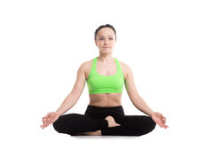 Ardha Padmasana yoga pose Stock Images