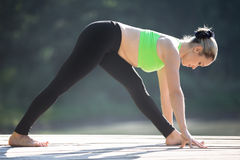 Ardha Parsvottanasana Pose Stock Photo