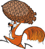 Ardilla con pinecone Imagen de archivo libre de regalías