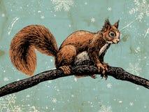 Ardilla en fondo del invierno stock de ilustración