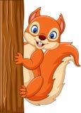 Ardilla linda de la historieta que sube en un árbol ilustración del vector