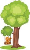 Ardilla linda que juega el oscilación del árbol Fotos de archivo libres de regalías