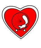 Ardilla y rueda del corazón Imagen de archivo