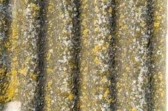 Ardoise de toiture Images stock