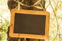 Ardoise en bois photo libre de droits