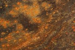 Ardoise tachetée Image libre de droits