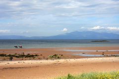 Ardrossan Beach Stock Photo
