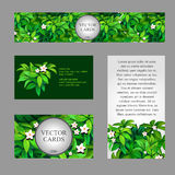Сards with texture of green leaves with small. Four cards with the texture of green leaves with small white flowers and sample text on white and green Royalty Free Stock Images