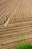 Area of arable land Stock Photos