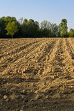 Area of arable land. The ploughed earth Royalty Free Stock Photo