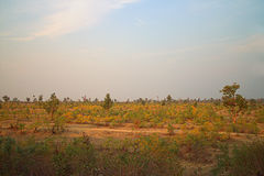 Area around Nagpur, India. Dry foothills with orchards (farmers gardens) Royalty Free Stock Image