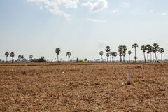 Area behind Kiling Fields, Phnom Penh, Cambodia. Stock Images