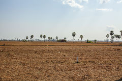 Area behind Kiling Fields, Phnom Penh, Cambodia. Royalty Free Stock Images